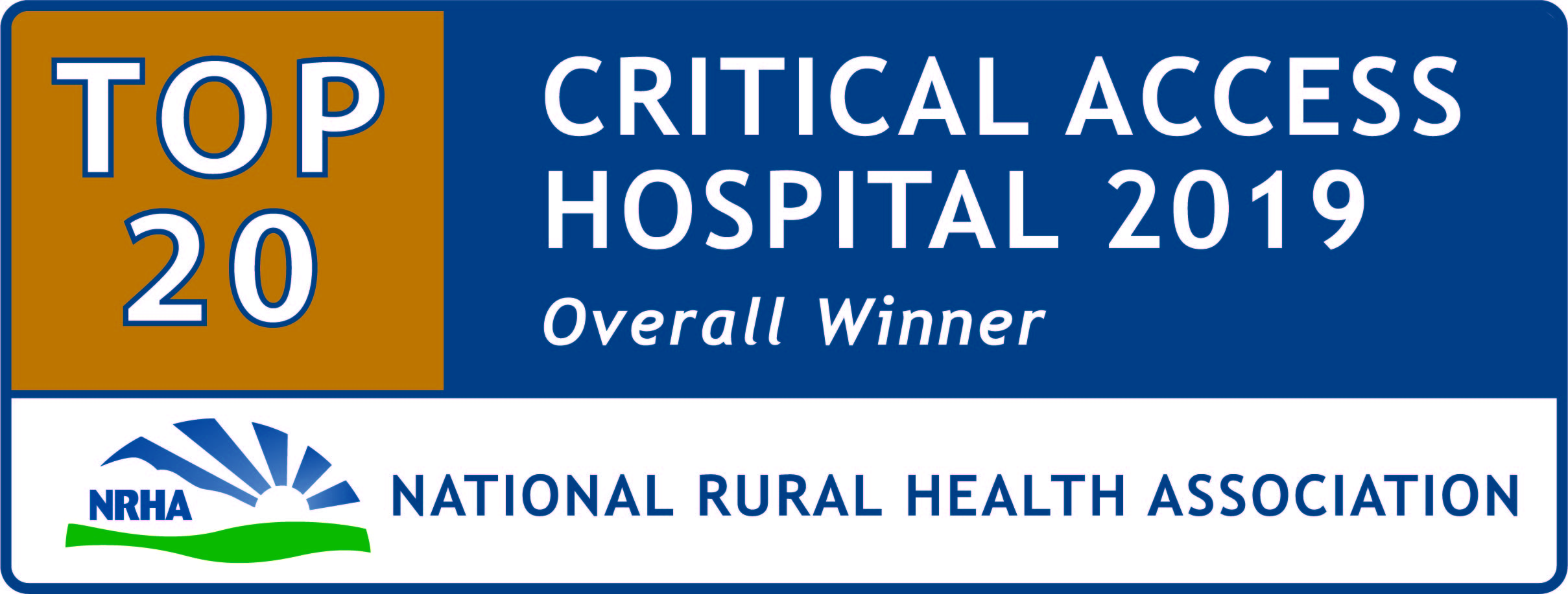 Critical Access Top 20 Hospital 2019 logo